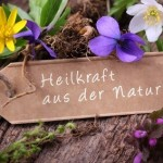 Heilkraft aus der Natur verschiedene Pflanzen